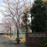 東京農業大学第一高等学校・中等部